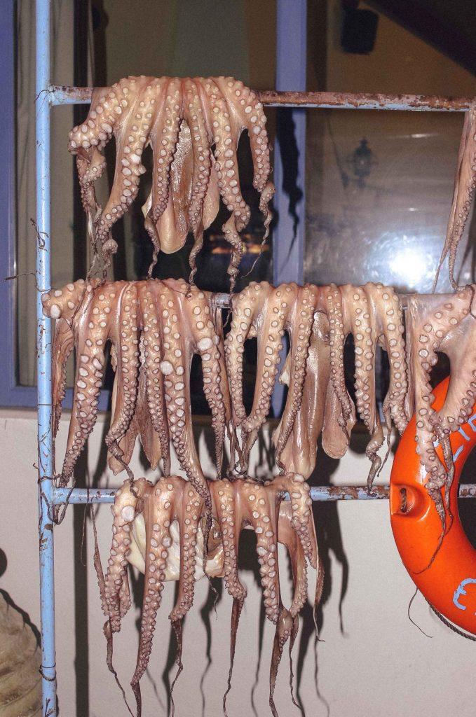 Polpi esposti in una taverna greca di Ermioni in Grecia