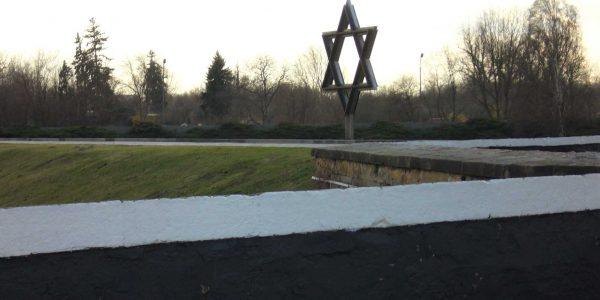 Cimitero ebraico di Terezin: stella di Davide